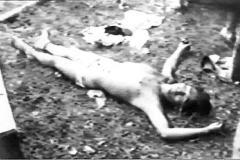 콜롬비아 - 살인자의 천국 스틸컷1