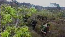 플랜 콜롬비아 Plan Colombia